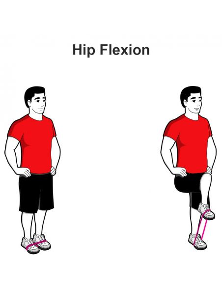 Exercises with Exercise Band Loops