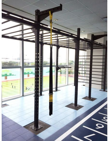 Customized CrossFit Rig